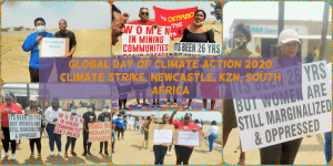A collage showcasing the Global day of climate action in Newcastle